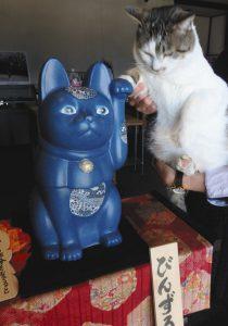 看板猫(右)と併せて人気の「びんずる尊猫」=高森町の瑠璃寺瑠璃の里会館で