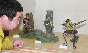 紙で精巧に作られたチョウやセミ=石川県白山市の県ふれあい昆虫館で