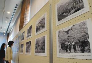 昭和の花見の光景などを紹介している写真展=小浜市の若狭歴史博物館で