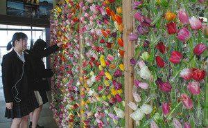 いろいろな品種のチューリップが飾られた作品=北陸新幹線新高岡駅で
