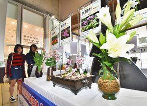 北陸新幹線の利用客を迎える飛越能各地の花々=JR新高岡駅で