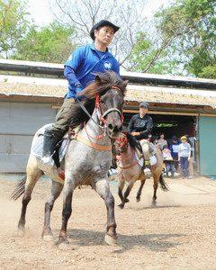 馬場を駆け足する2頭の在来馬=近江八幡市加茂町で