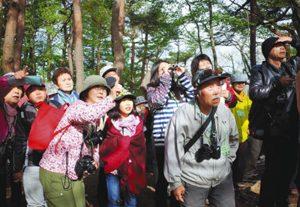 野鳥観察を楽しむ参加者たち=岡谷市塩嶺の県小鳥の森で