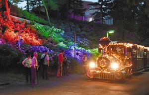 虹色にライトアップされたアジサイと、園内を運行するトレーン=射水市黒河で