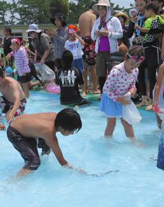 泳ぎ回るウナギを捕まえようとする子どもたち=湖西市新居町で