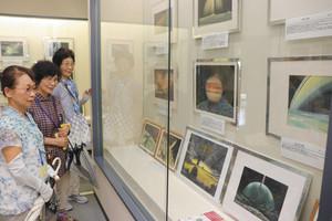 細密に描かれた岩崎さんの宇宙画=長浜市の国友鉄砲の里資料館で