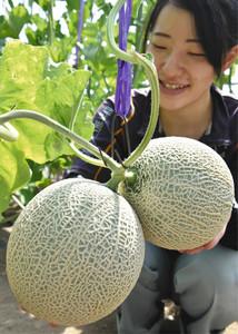 中井美穂さんらが大切に育てている「双子」のメロン=高山市久々野町山梨で