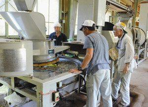 田峯茶業組合の製茶工場で紅茶作りに取り組む組合員=設楽町田峯で