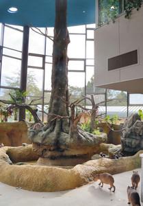 屋内展示室ではカピバラなどの動物と触れ合うことができる=福井市足羽山公園遊園地で