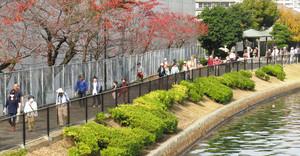 毎年人気を集めている駅ちかウォーキングの様子=名古屋市交通局提供