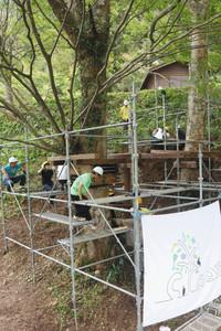 2本のケヤキを中心にツリーハウスを製作する学生たち=長浜市の大見いこいの広場で
