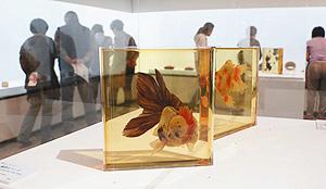 樹脂の中を泳ぐように描かれた金魚=刈谷市美術館で