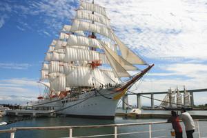 新湊大橋をバックに帆を広げる海王丸。周辺ではさまざまなイベントが計画されている=射水市で