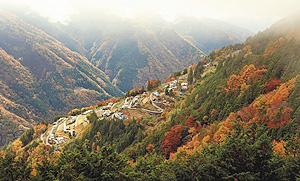 薄日で輝きを増す、下栗の里を囲むように色づいた山々の紅葉=飯田市上村で