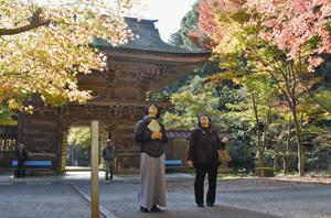 紅葉を楽しむ参拝者たち=美濃市大矢田の大矢田神社で
