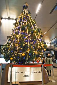 きらびやかに輝く高さ5メートルのクリスマスツリー