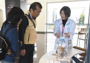 来館者と会話をしながらエネルギーの活用法などを解説する大木雪子さん(右)=静岡市駿河区のふじのくに地球環境史ミュージアムで