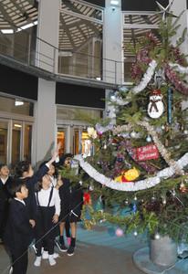 高さ4メートルのクリスマスツリーに歓声を上げる児童たち=穴水町さわやか交流館プルートで