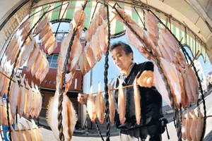 冬の訪れを告げる「若狭かれい」の天日干し=小浜市の鍵仙倉谷商店で