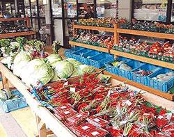 野菜がメーン奥びわ湖水の駅