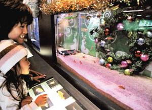 色鮮やかな熱帯魚が泳ぐカラフル水槽を楽しむ親子連れ=各務原市川島笠田町のアクア・トトぎふで
