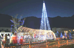森の発電所の電力を使った電飾=白川町三川で