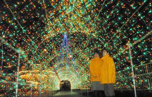 空から光が降ってくるような演出のイルミネーションのトンネル=魚津市の遊園地ミラージュランドで