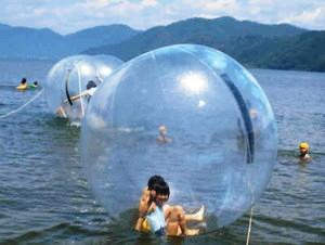 昨年の「水とロマンの祭典」でウオーターボールに入って楽しむ子どもたち=湖北町尾上の琵琶湖で
