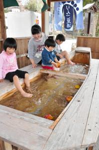 「りんご足湯」を楽しむ家族連れ=飯田市天龍峡で