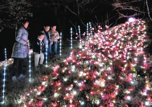 色鮮やかなイルミネーションが点灯された公園内=岐阜市黒野の黒野城跡公園で