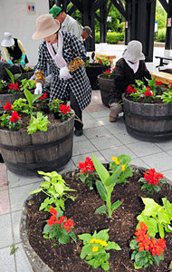 プランターに花苗を植え込む参加者ら=砺波市花園町で