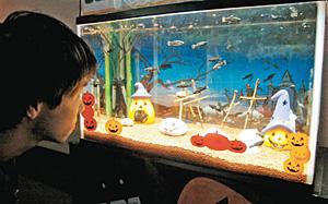 ハロウィーンをテーマにした水槽=魚津水族館で