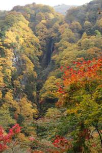 色鮮やかなカエデやモミジで彩られた松川渓谷の「八滝」(中央)=高山村で