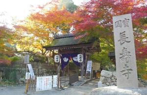 「湖南三山」の一角、長寿寺。今週末が紅葉のピークとなりそう=湖南市東寺で