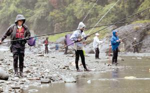 好ポイントに陣取りアユ釣りをする釣り人たち=静岡市清水区但沼町の興津川で
