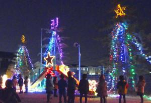 鮮やかな電飾に彩られた園庭のモミの木=彦根市川瀬馬場町で