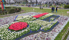 国旗などを描いたチューリップ花壇=静岡市葵区の駿府城公園で