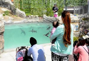 平日でも多くの来園者が集まるフンボルトペンギンのエサやり=飯田市の市立動物園で