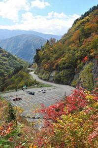紅葉が最盛期を迎えた白山スーパー林道「栂の木台駐車場」=白山市で
