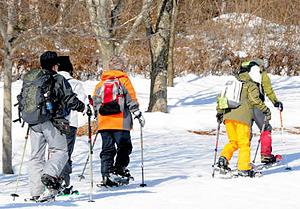 スノーシューで雪原を進むツアー参加者=長野県駒ケ根市で