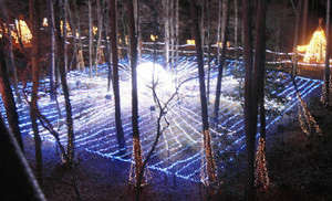 「天」をイメージし、宇宙空間を漂うかのような感覚を味わえる大町・松川地区の電飾=大町市の国営アルプスあづみの公園で