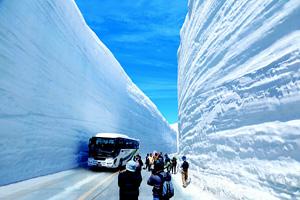 立山・雪の大谷ウォーク=2013年撮影