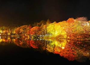 茶臼山紅葉ライトアップ=昨年