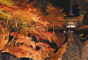 石山寺の紅葉ライトアップ=昨年