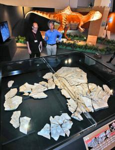 スペイン国外初公開のコンカベナトールの全身骨格(手前)の説明をするフランシスコ・オルテガ教授(左)と柴田正輝研究員=勝山市の県立恐竜博物館で