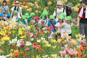 ユリの花に見入る園児ら=高島市今津町で