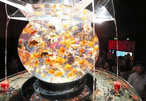 幻想的なライトで照らし出される水槽内の金魚=名古屋市東区東桜1のテレピアホールで