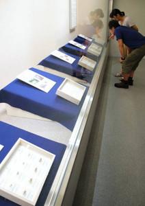 さまざまな昆虫の抜け殻を集めた企画展=中津川市苗木の市鉱物博物館で