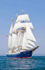 名古屋港に寄港する帆船「みらいへ」=グローバル人材育成推進機構提供