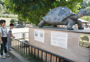 登場したガラパゴスゾウガメの像(右)。奥の下は飼育されているアルダブラゾウガメ=いしかわ動物園で